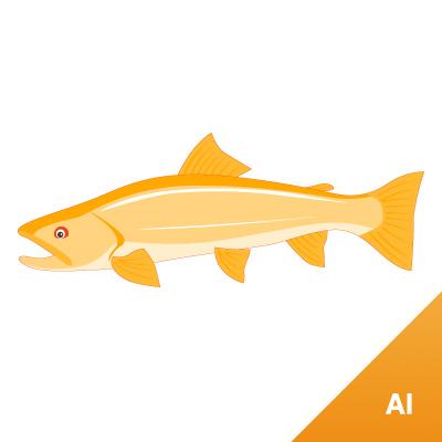 126 魚 素材カテゴリー: イラスト|魚 魚の無料(フリー)素材です。  魚 : Illust
